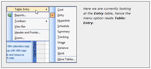 Custom Tables in Microsoft Project 2003, 2007, and 2010